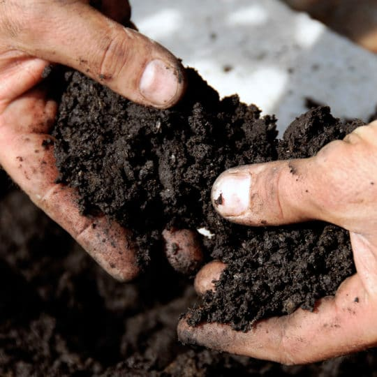 Three Benefits of Silicon as a Soil Conditioner